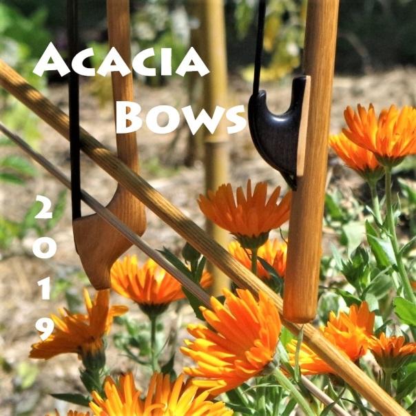 Acacia bows 2